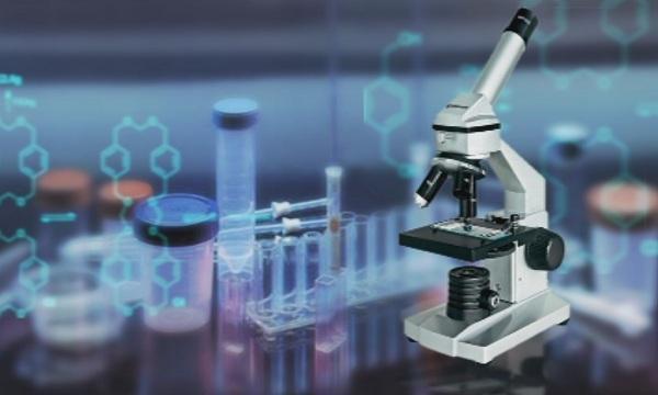 Срещу коронавируса - има ли граници за науката в борбата със заразата?