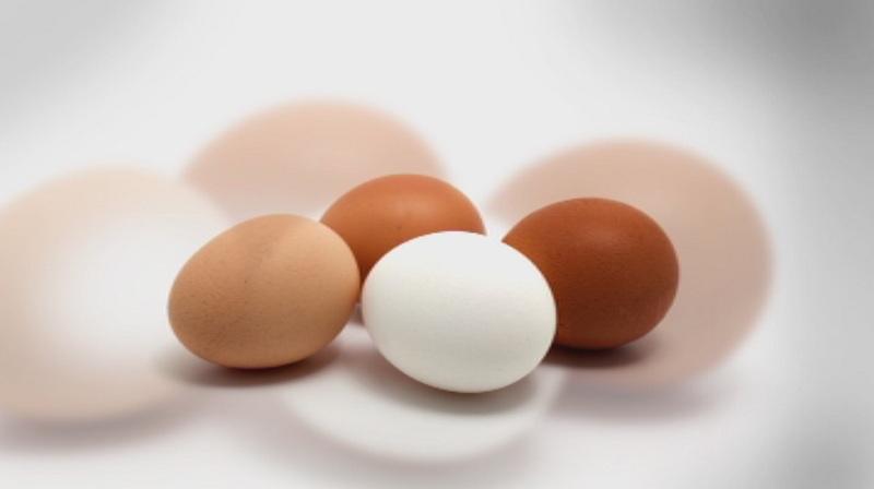 Фипронил в яйцата. Какви могат да бъдат последиците?