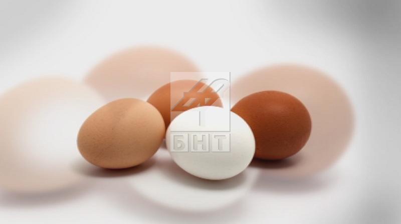 БАБХ: Няма опасност за здравето от заразените с птичи грип яйца