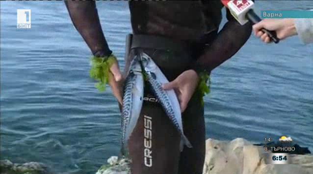 Днес е Световният ден на риболова