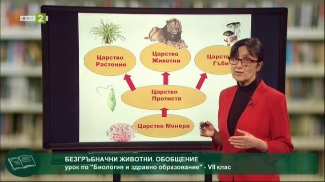 Биология и здравно образование 7.клас: Безгръбначни животни. Обобщение
