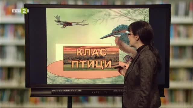 """БИОЛОГИЯ И ЗДРАВНО ОБРАЗОВАНИЕ 7.клас: Клас """"Птици"""""""