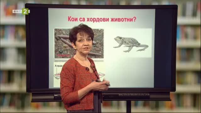 Биология и здравно образование 7.клас: Обща характеристика на гръбначни животни
