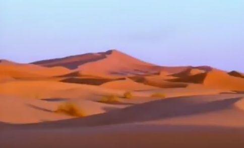 Саудитската династия