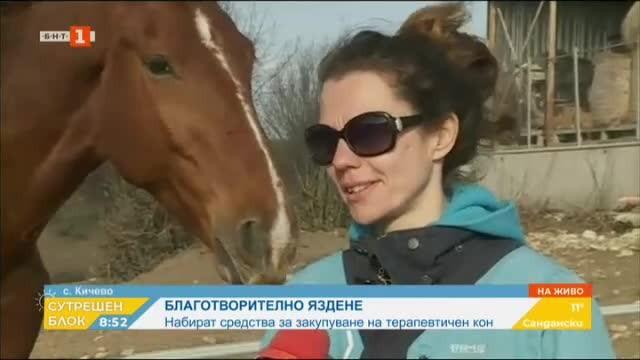 Събират средства за закупуване на терапевтичен кон за базата в село Кичево