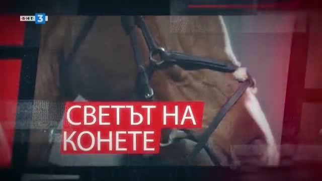 Светът на конете - 04.11.2019 г.