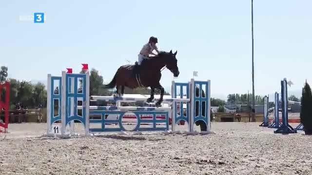 Светът на конете - 19.10.2019