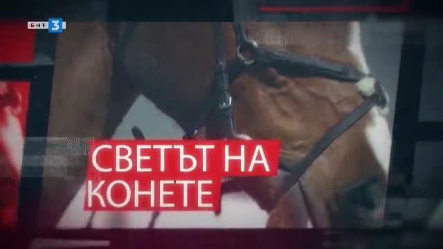 Светът на конете - 22.06.2019