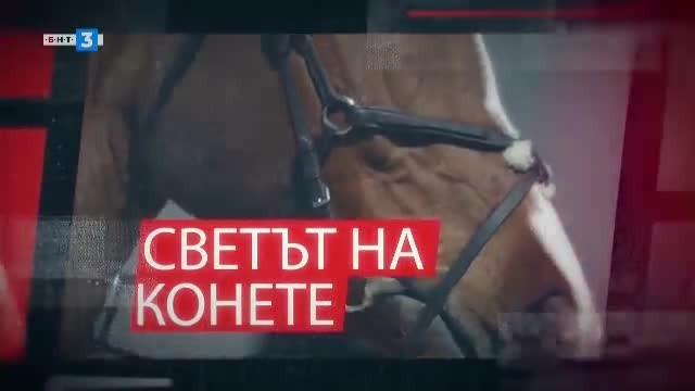 Светът на конете - 24.08.2019