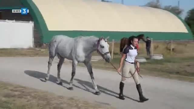 Светът на конете - 28.09.2019