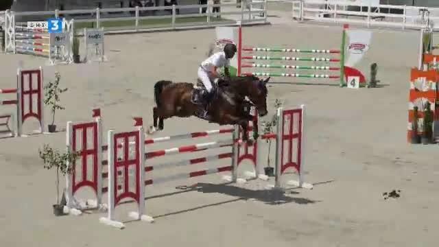 Светът на конете - 29.06.2019