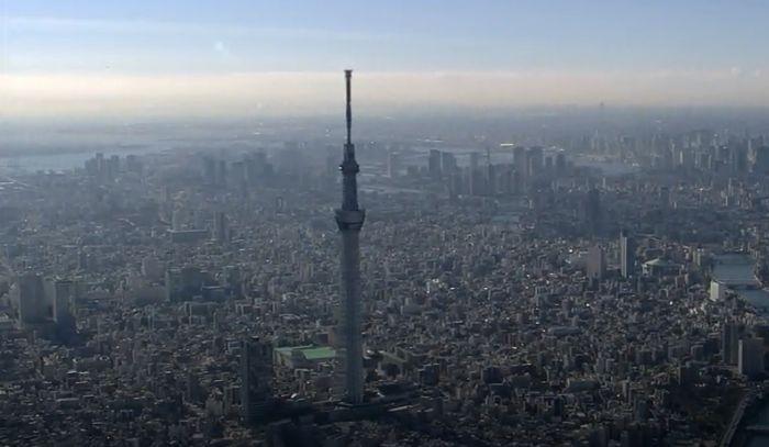Фениксът Токио