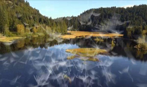 Защо да стигнем по-далеч: Прекосяването на Вогезите