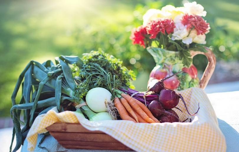 Производството на зеленчуци – висш пилотаж или руска рулетка?