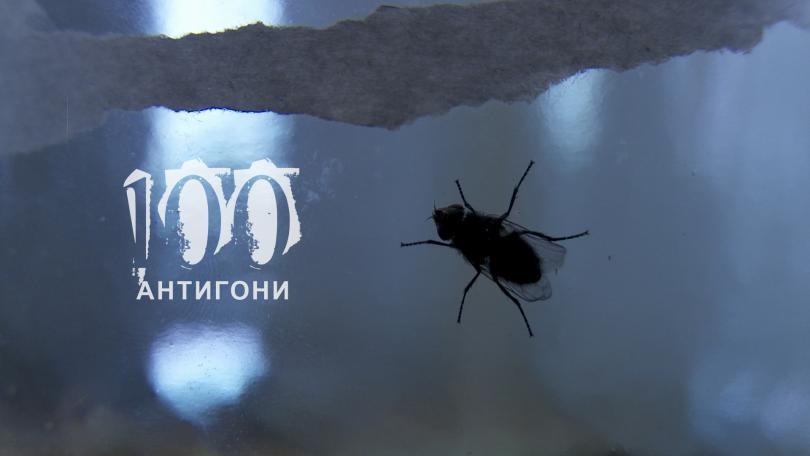 В кадър - 12 май 2014 : 100 Антигони