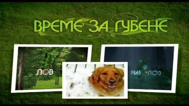 Време за губене - Кинология - 3 Ноември 2012 г.