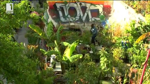 Градинарят партизанин от Лос Анджелис