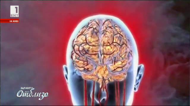 Митове и истини за мозъка