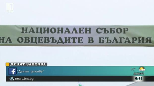Шести национален събор на овцевъдите в България