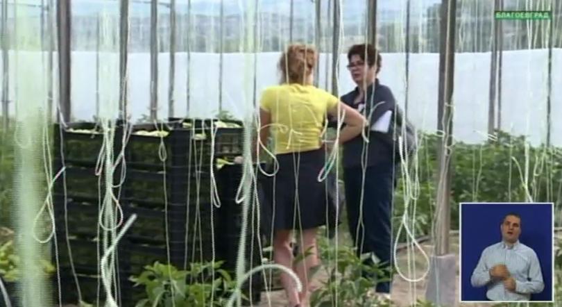 Какви са изискванията към производителите на биопродукти?