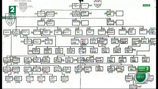 Как да си направим родословно дърво?
