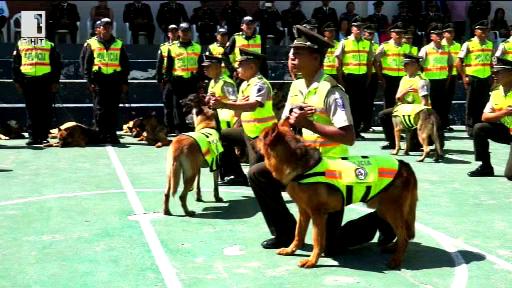 Кучета-полицаи в пенсия