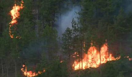 Какви са причините за пожарите и как да ги избегнем