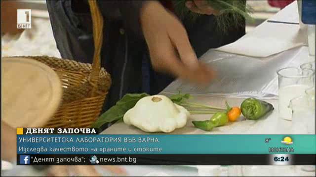 Университетска лаборатория във Варна изследва качеството на храните и стоките