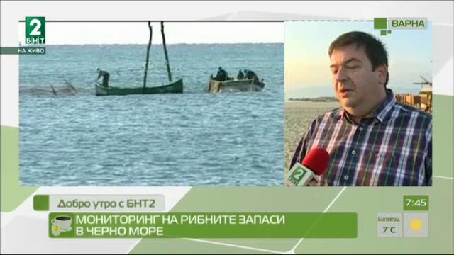Мащабно изследване на рибните запаси в Черно море