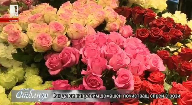 Как да си направим домашен почистващ спрей с рози?