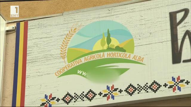 Как изглежда един земеделски кооператив в Румъния