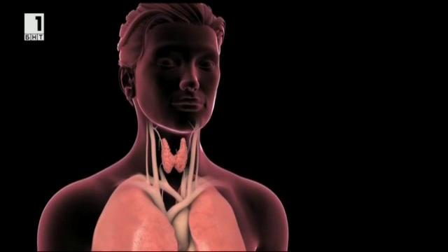 Заболявания на щитовидната жлеза