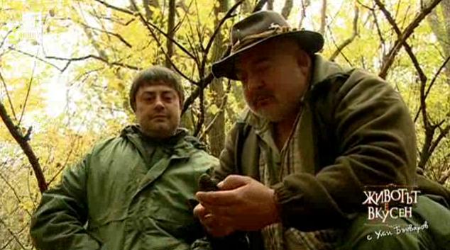 На лов за трюфели