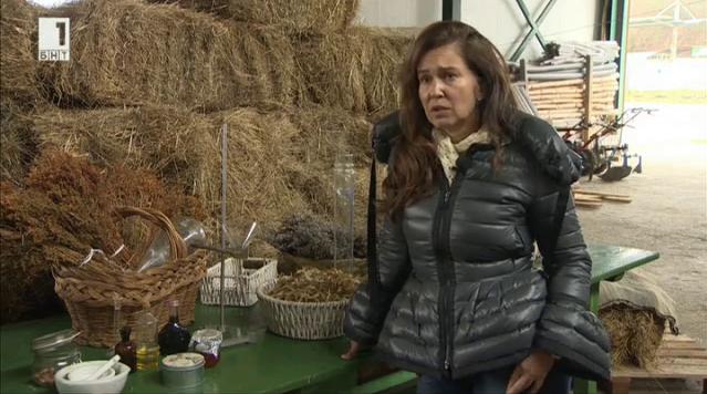 Момиче, което отглежда билки в Котленския Балкан