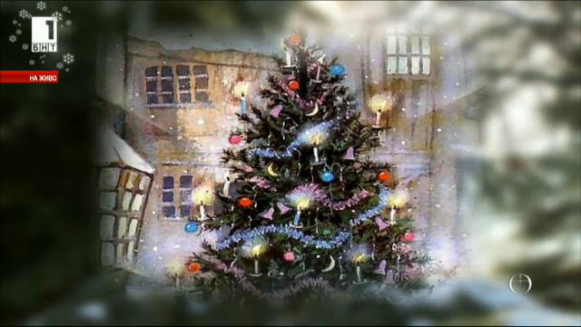 Елхата - символ на Рождество Христово