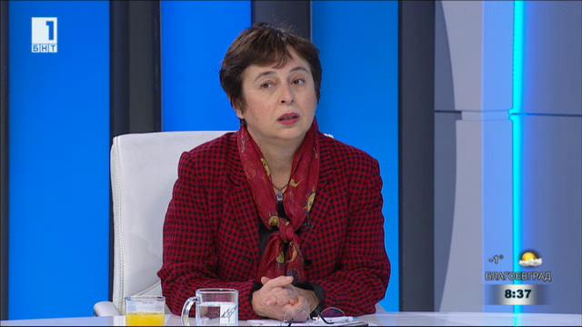 Експертът за истината и спекулациите около Истанбулската конвенция