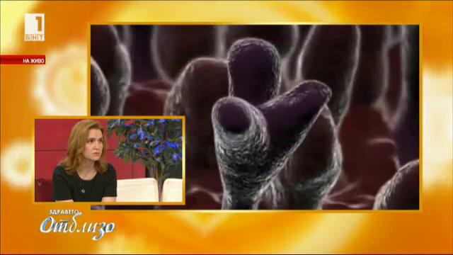 Кои грипни щамове върлуват и как да се предпазим