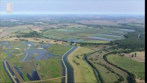 Влажните зони - решение за пречистване на водите