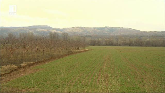 Земеделският рай на земята, описан от Владимир Димитров-Майстора