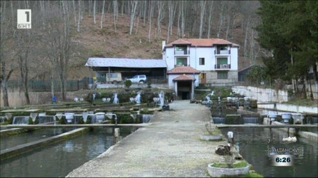 Къде в България се добива черен хайвер и се развъждат есетрови риби?