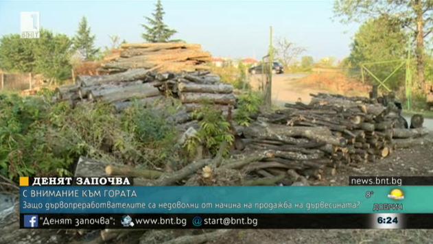 Защо дървопреработвателите са недоволни от начина на продажба на дървесината?