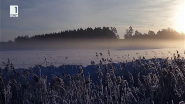 Вкусната Европа: Латвия