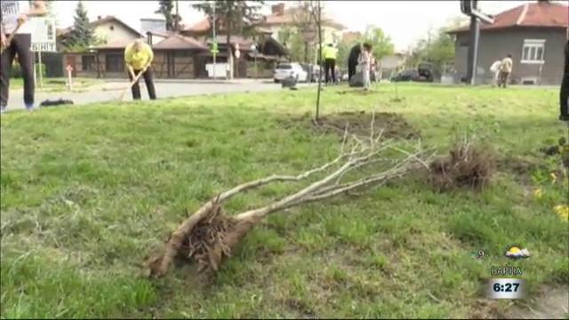 Доброволци почистват и озеленяват Кюстендил