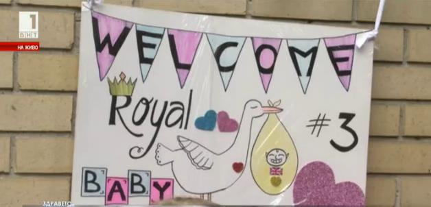 В очакване на третото кралско бебе и на кралската сватба във Великобритания