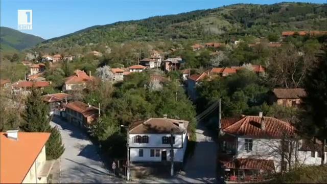 Животът на село: Свежен