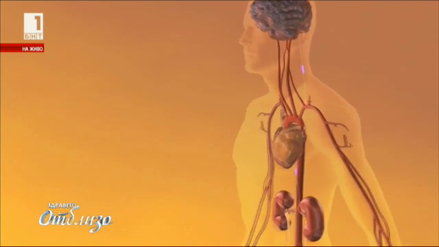 Борим хипертонията с ренална денервация