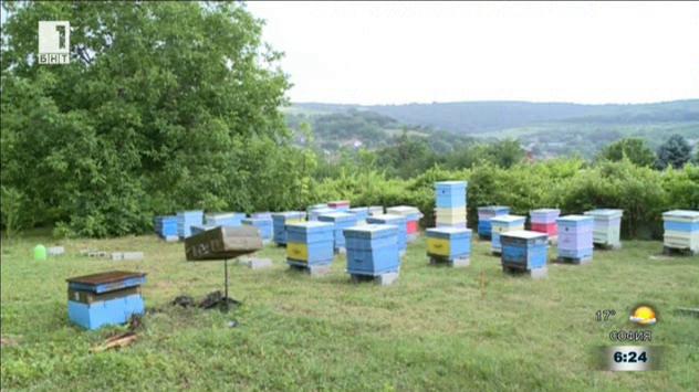 Пчелари в помощ на свои колеги от село Полски извор