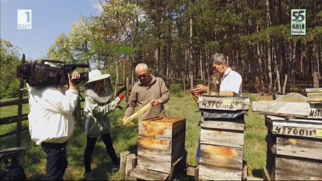 Биопчеларството и субсидиите за него