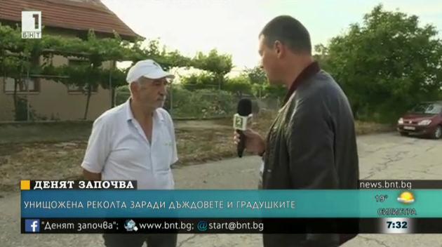 Градушка порази реколтите в благоевградските села Бучино и Българчево
