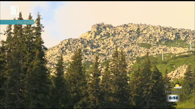 Каква подготовка е нужна за туризъм в планината през лятото
